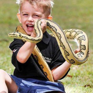 cherekhan_snake